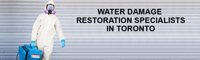 Water Damage Restoration Specialists In Toronto